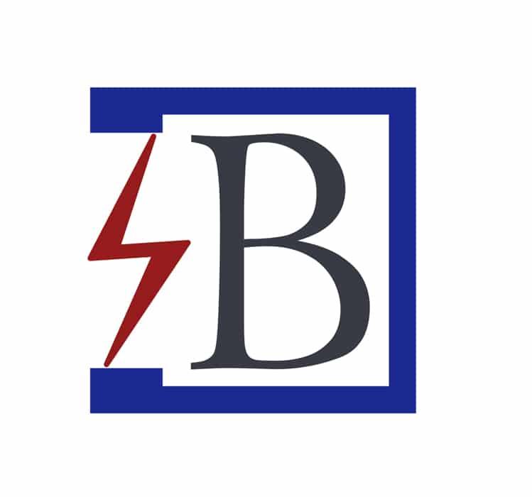 Electricite generales SAS Bonhomme Tramayes (2)