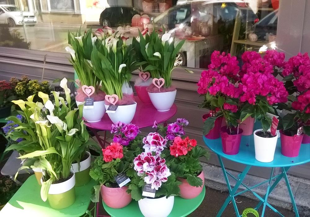 Fleuriste Julie Feurs TRAMAYES Saone et Loire Bourgogne Cluny Matour (3)